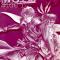 WSB.Обложка 1 тома