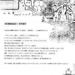 Schwarz II. Буклет